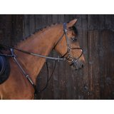 Martingaal Riding World Full_