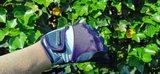 Handschoenen Cavalli Puri_