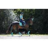 LeMieux Loire Polo bandages_