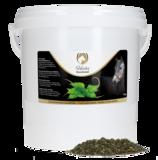 Excellent Herbs Brandnetel_
