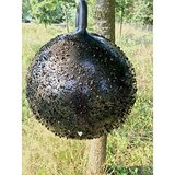 Horse Fly Trap Ball_