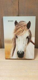 Paarden Agenda 2020