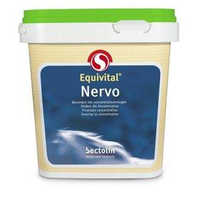 Equivital Nervo