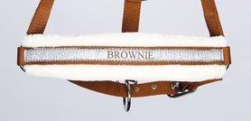 Halster Lyrics; Brownie