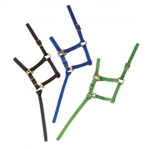 Veulenhalster met touwtje