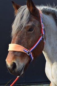 Holland Halster Trekpaard