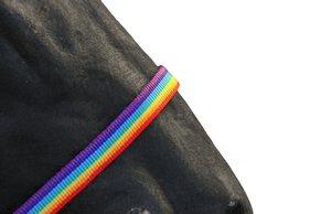 Halster Rainbow