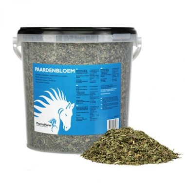 Pharmahorse Paardenbloem
