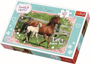 Paarden Puzzel Spirit