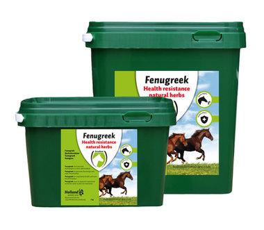 FENUGREEK (FENEGRIEK) 1kg