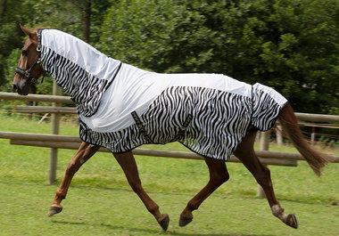 Zebra vliegendeken Pfiff