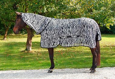 Zebra vliegendeken Rugbe