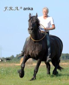 FRA Anka Rijring