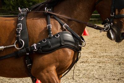 """Cellpad Empathy Borstonderlegger bestemd voor """"Zilcotuigen""""  Pony"""