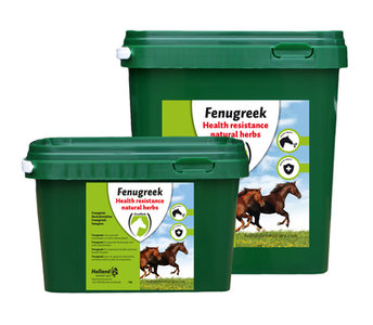 FENUGREEK (FENEGRIEK) 2,5kg